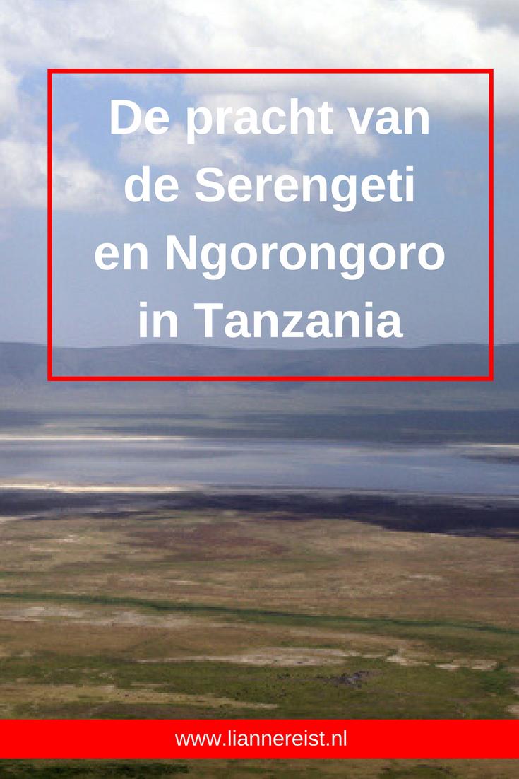 De pracht van de Serengeti en Ngorongoro in Tanzania