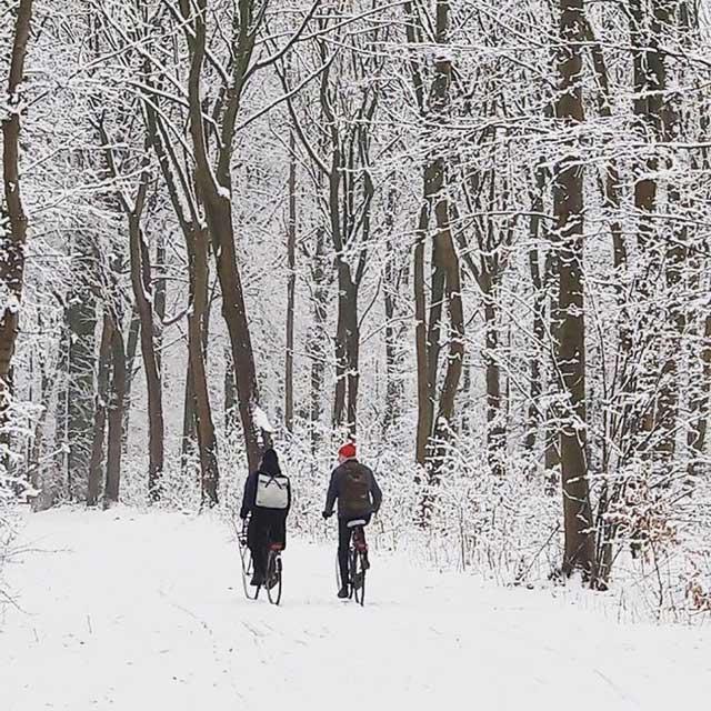 Tien populairste Instagram foto's na een jaar - Fietser in het besneeuwde Haagse Bos