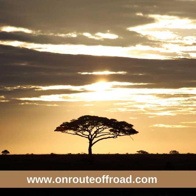 Mijn tien populairste Instagram foto's na een half jaar - nummer 3 zonsopkomst in de Serengeti in Tanzania