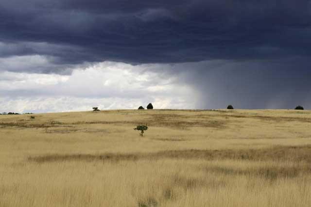 Mijn tien populairste Instagram foto's na een half jaar - nummer 8 grasland ten oosten van Zion National Park in Utah in de Verenigde Staten