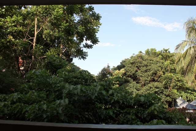 Eerste tien uitzichten van verblijfplaatsen tijdens wereldreis - Bukit Lawang