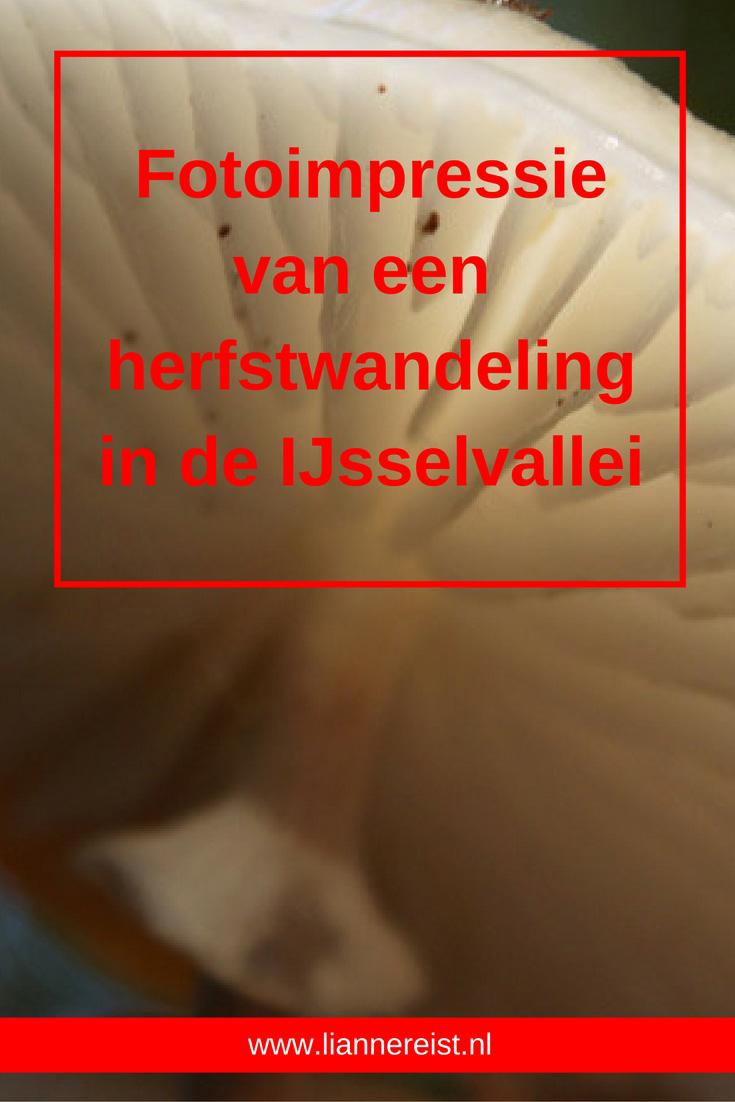 Herfstwandeling IJsselvalei - Fotoimpressie