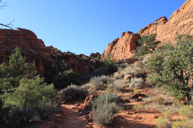 Omgeving Las Vegas - Deel van de wandelroute Hidden Canyon in Snow Canyon State Park