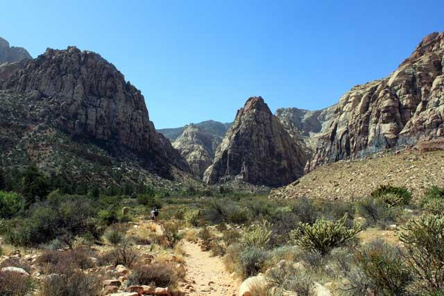 Omgeving Las Vegas - Het wandelpad naar Pine Creek Canyon in Red Rock Canyon