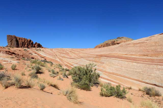 Omgeving Las Vegas - Deel van de Fire Wave in Valley of Fire State Park