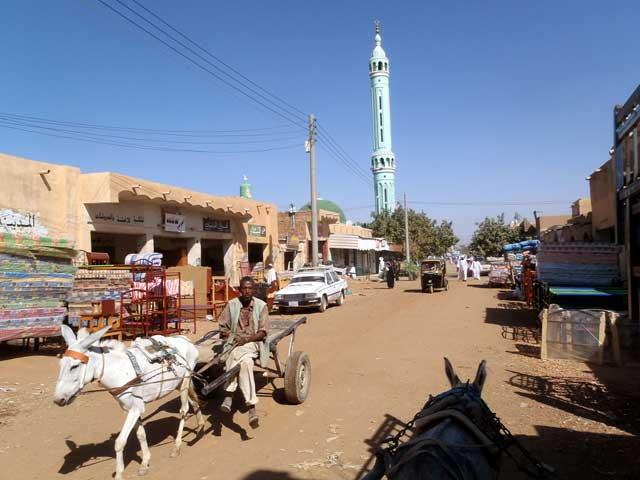 Sudan in dertien portretten - Man met ezel in Shendi