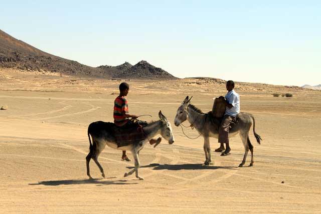 Sudan in dertien portretten - Twee jongens op de ezel ontmoeten elkaar