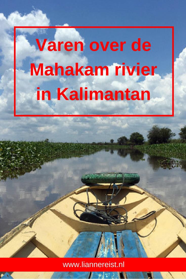 Varen over de Mahakam rivier in Kalimantan: verslag van een boottocht