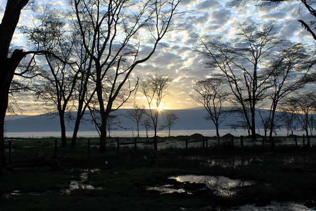 Zonopkomst in Lake Nakura nationaal park in Kenia