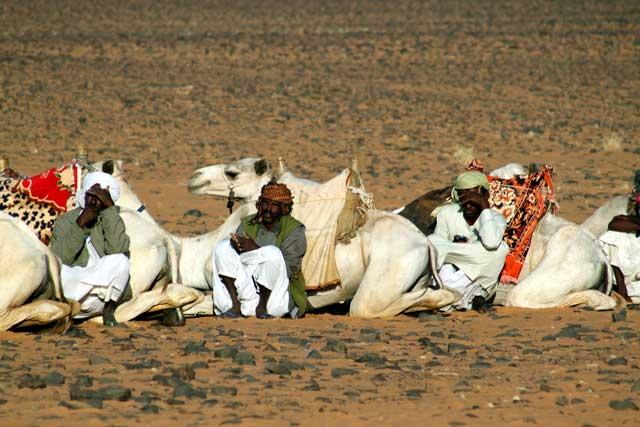 Bedoeïen met hun dromedarissen in de woestijn in de buurt van de piramides van Meroe in Sudan (Soedan)