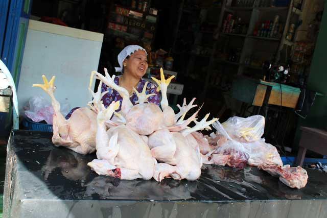 Mensen langs de Mahakam rivier in Kalimantan - Vrouw verkoopt geslachte kippen