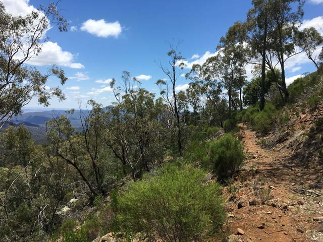 Breadknife en Grand High Tops wandeling in Warrumbungle Nationaal Park, New South Wales, Australië - Wandelpad West Spirey Creek